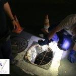 Poceros en Madrid en pozo nocturno